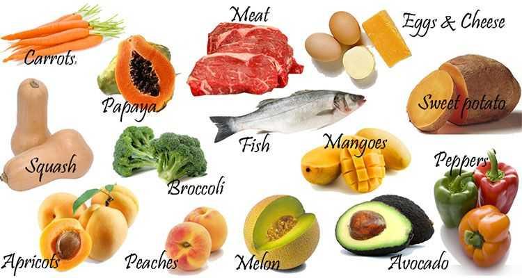 Топ 10 Хранителни Добавки