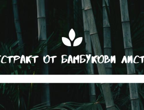Екстракт от бамбукови листа за кожа, коса, нокти и кости